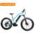 low Height frame battery fat tyre electric bicycle customized e bike