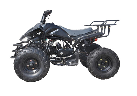125CC Street legal atv for sale