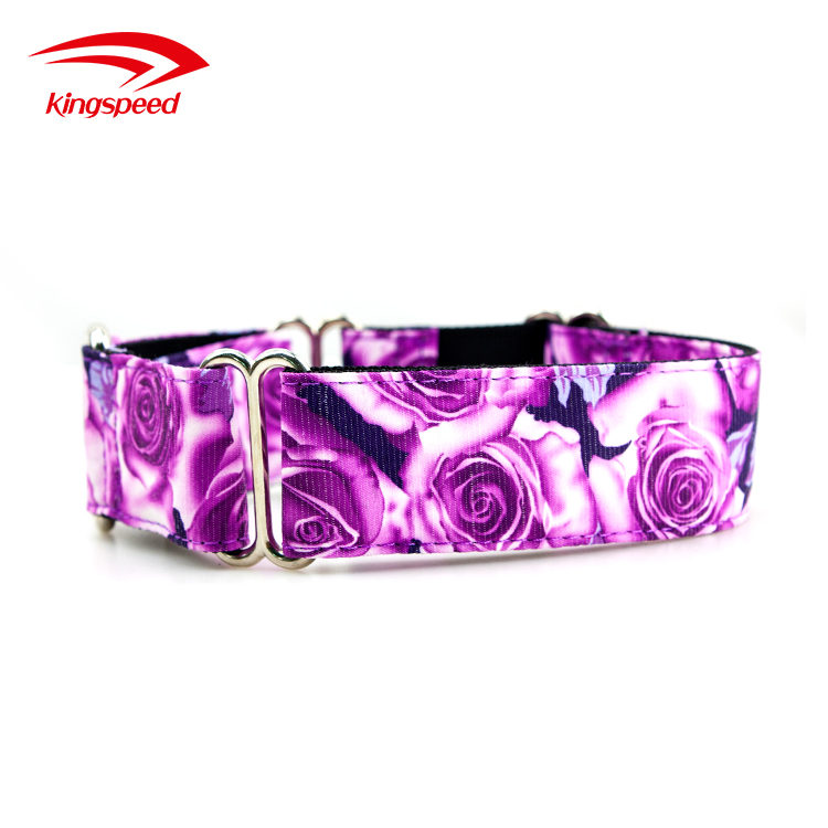 Design Heavy Duty Adjustable Nylon Dog Training Buckled Taupe Collar Wholesale Martingale Collars