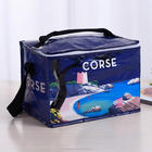 Cool Bag School Picnic Lunch Box Insulated Small Thermal Cooler Novelty 5 Litre