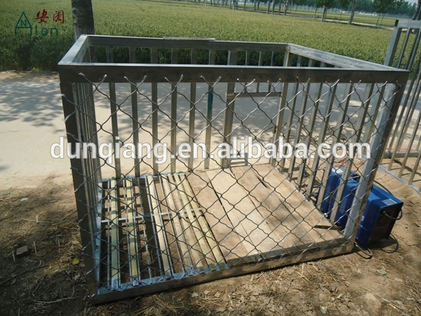 Large Dog Kennel Lowes Dog Kennels And Runs Cheap Dog