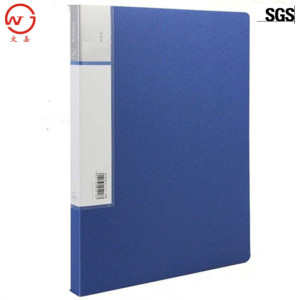 Customized A4 eco-friendly pp plastic file folder for office and school