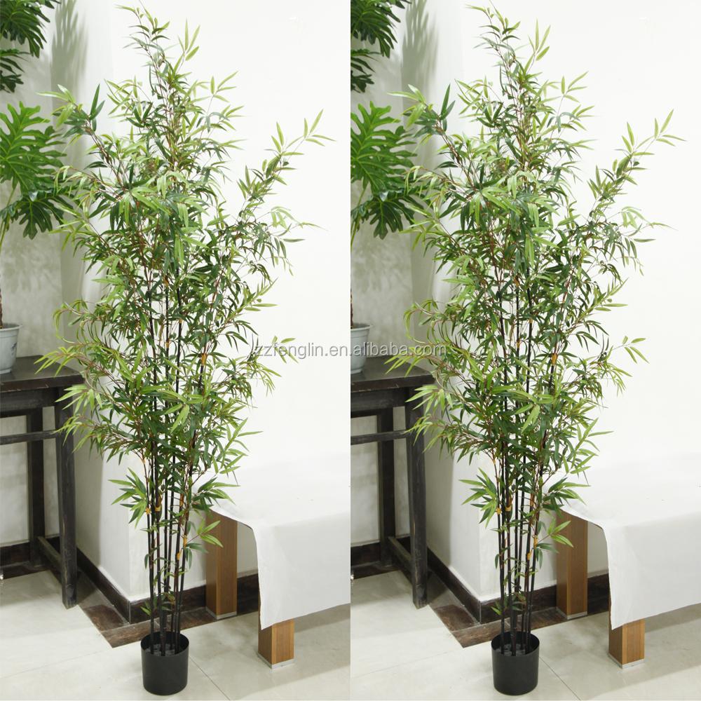 gros bambou deco exterieur interesting deco jardin avec bambou les meilleures ides de la with. Black Bedroom Furniture Sets. Home Design Ideas