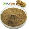 100% Pure Codonopsis Root Extract