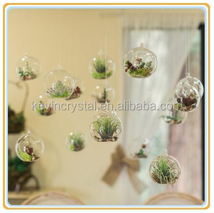 Air Plants Favors Glass Terrarium Tealight Holder Globe Lantern