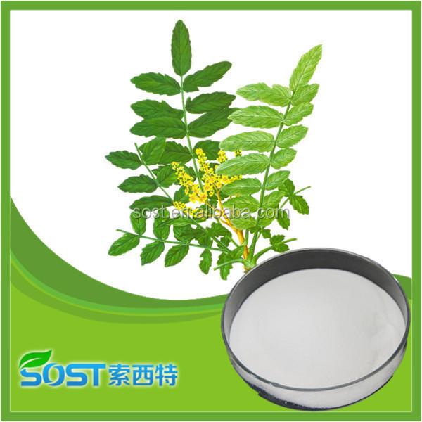 China Supplier Pure Mastic Gum Powder