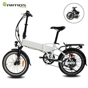tailg e bike with aluminum bike electric with two wheels for sale TDN137Z