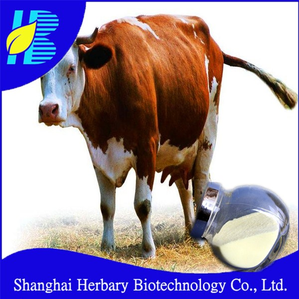 Natural Bovine bone extract calcium chondroitin sulfate for joint health