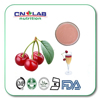 Factory Supply Cherry fruit extract powder for drink with Vitamin C Acerola