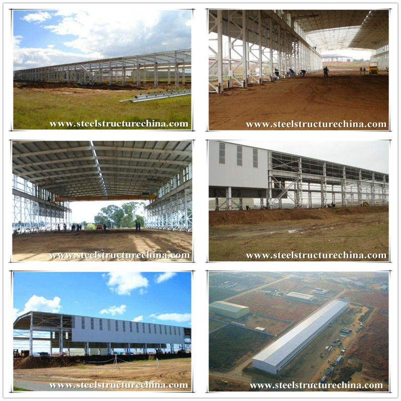 Chinese steel structure building supplier