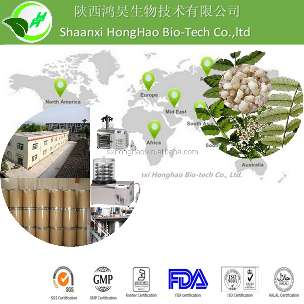 boswellia serrata extract/boswellia extract/boswellia serrata extract powder
