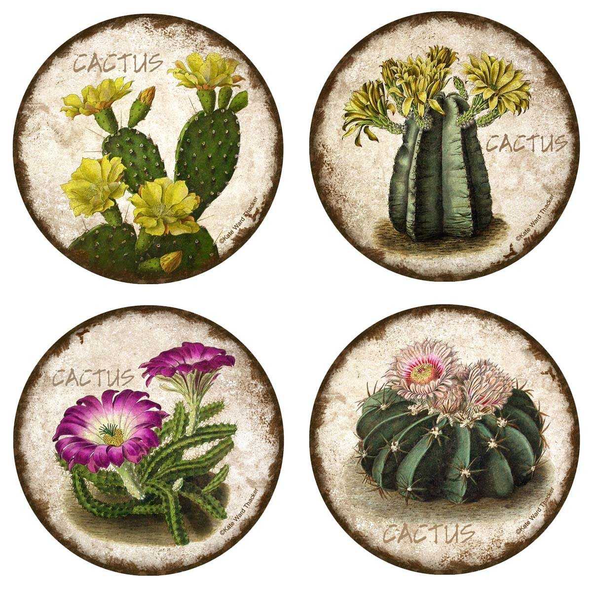 Thirstystone Stoneware Coaster Set, Cactus Flowers