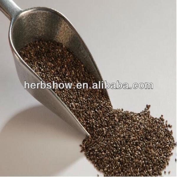 Chia Seed In Chinese/bulk Chia Seed