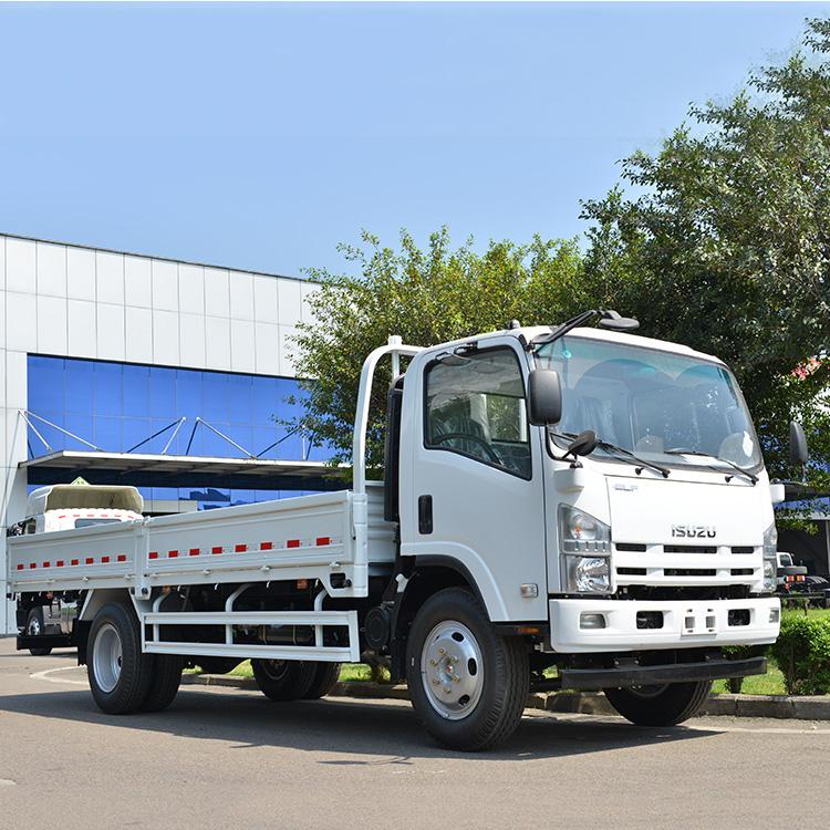 b5528c94d8 Hoe Sale Isuzu Elf 16ft Dropside Cargo Truck In Philippines - Buy ...