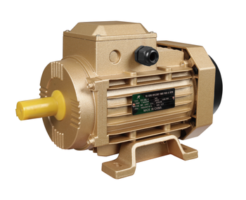 MS100L-2 4hp three phase electric motor