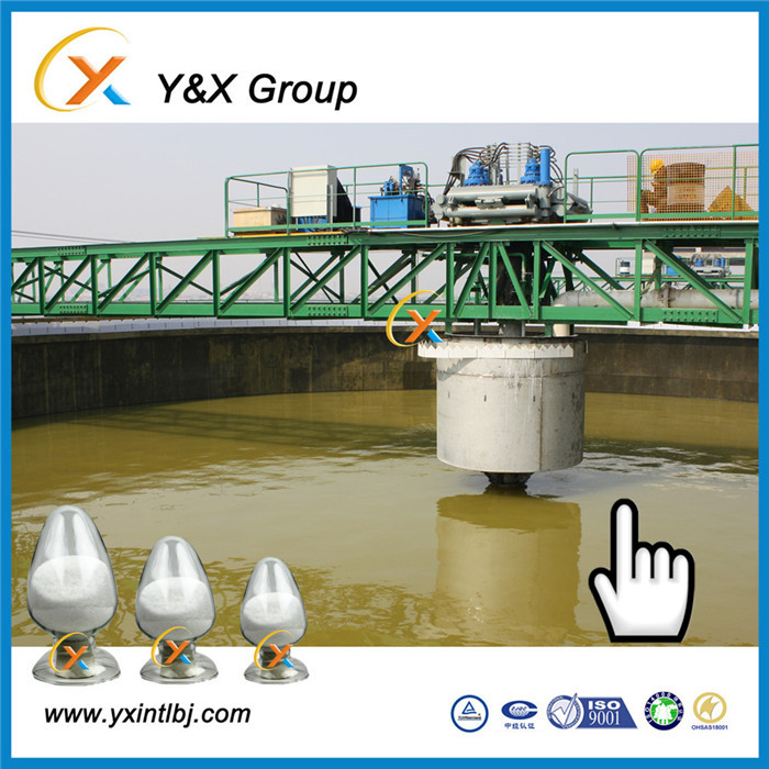 anionic polyacrylamide, cross linked linear , for sealing leaky ponds