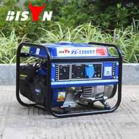 BISON(CHINA) Factory Direct portable Gasoline Generator Electricity Generator Set 1000w 1kva 1 kw 1kv Generator