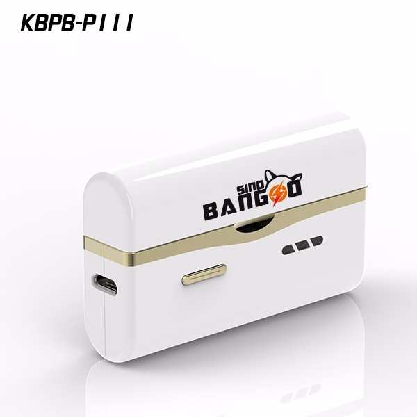 Mini powerbank with 500 times recycle by kingberry P111