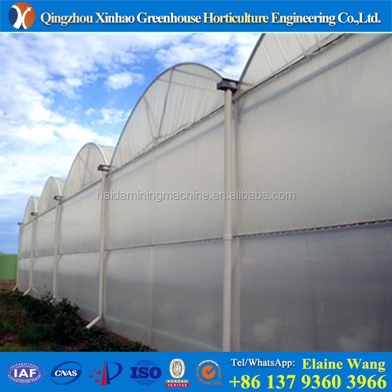 European quality plastic film light deprivation hydroponic greenhouse