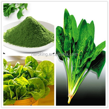 Factory Supply Pure Natural dehydrated Spinach powder HERBKING