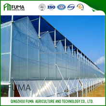 The best quality Multi-span PC sheet greenhouse