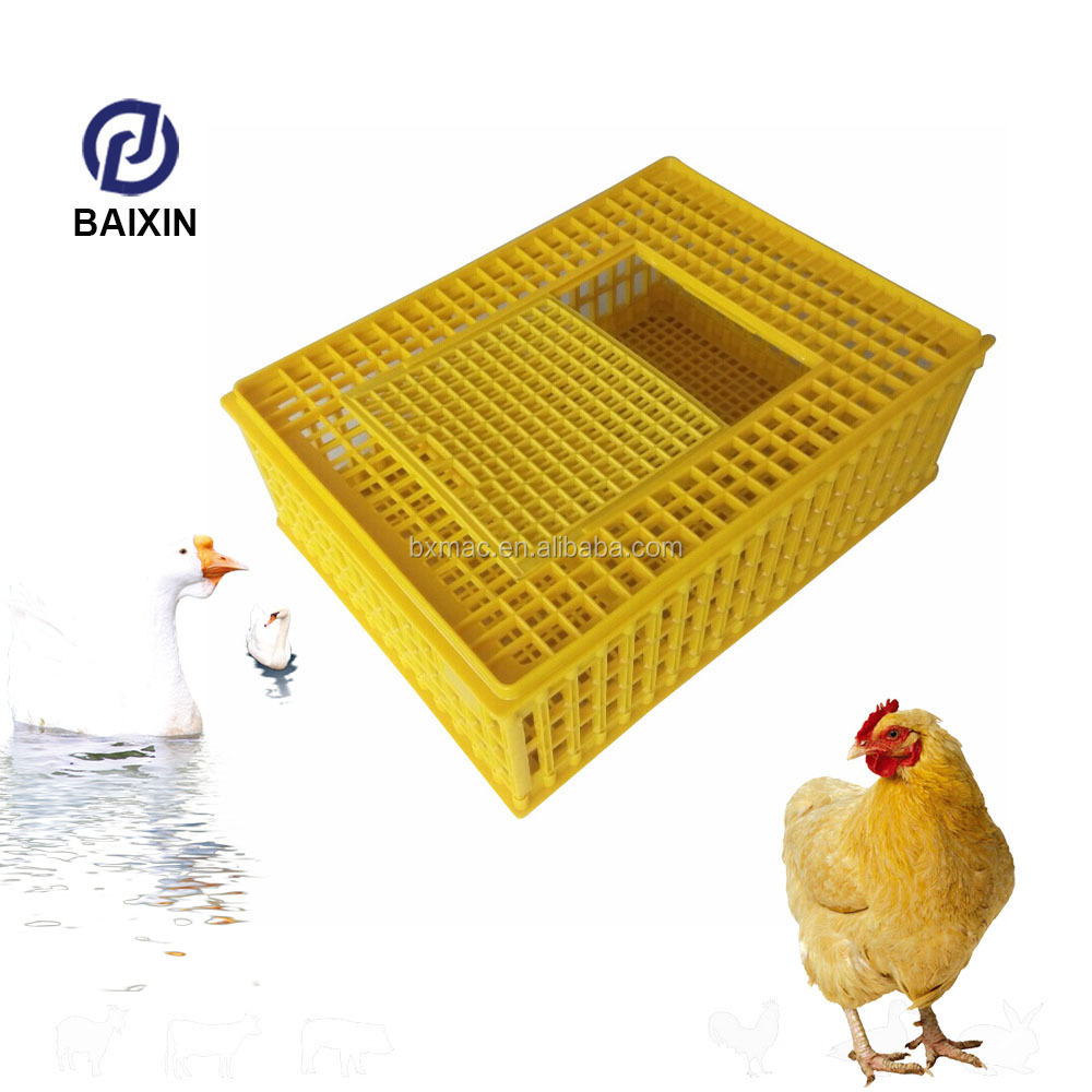 Best Selling Chicken Broiler Plastic Transportation Crate Cage Box