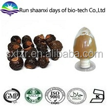 Supply Natural Sapindus Extract, Soapnuts Extract Powder, 70% Soapnut Saponins