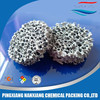 SIC silicon carbide foam porous ceramic filter for iron casting/alumina foundry 10-60ppi Diameporous ceramic filter