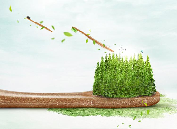 लंबी संभाल प्रकृति बांस लकड़ी बिक्री के लिए टूथ ब्रश