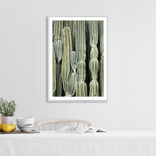 Green Vintage Succulent Plant Leaves Cactus More Size Selection Canvas Prints Art Poster Wall Pictures For Home Decoration