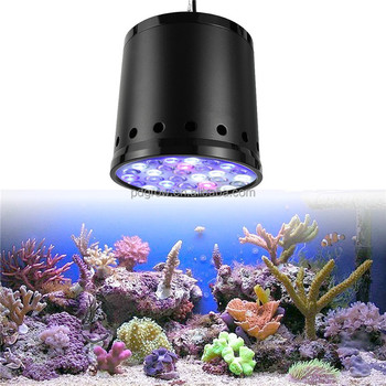 lamps everything to grow dayligh fluorescent about daylight lights know you full need lighting spectrum light fixtures