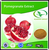 factory supply pomegranate extract and pomegranate peel extract