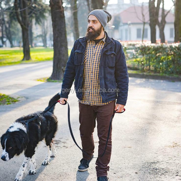 Wholesale China Dog Leashes  Dual Handle Rope Leash Luxury Pet Walking Nylon High Quality Reflective Dog Rope Leash Pet