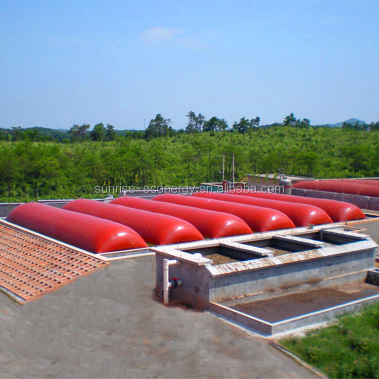 salable home mini cost of biogas bottling plant with anaerobic reactor