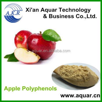 ISO&GMP Polyphenol/Phloridzin/Phloretin Apple Fruit Extract