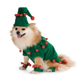 Creative Dog Costume / Novelty Pet Clothes / Cowboy Dog Clothing