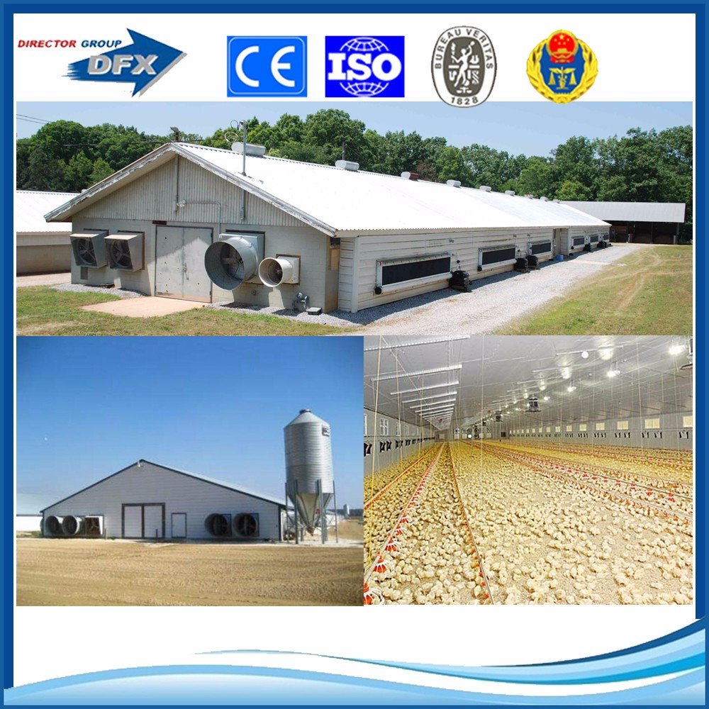 Low cost steel broiler poultry farm house design shed for Low cost farm house