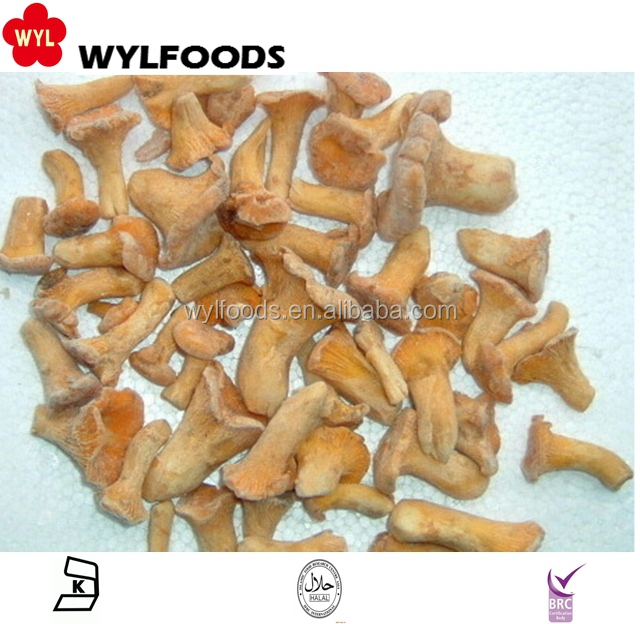 Grade A best price IQF Frozen Chanterelle mushrooms