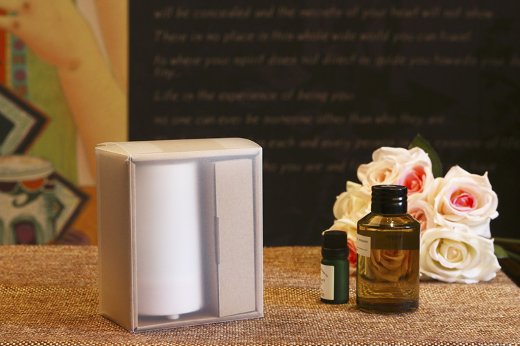 Image result for muji usb diffuser