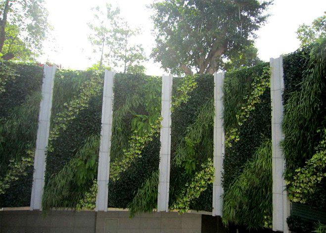 Sj planta artificial de las paredes de las plantas que viven de la pared c sped artificial - Plantas en la pared ...