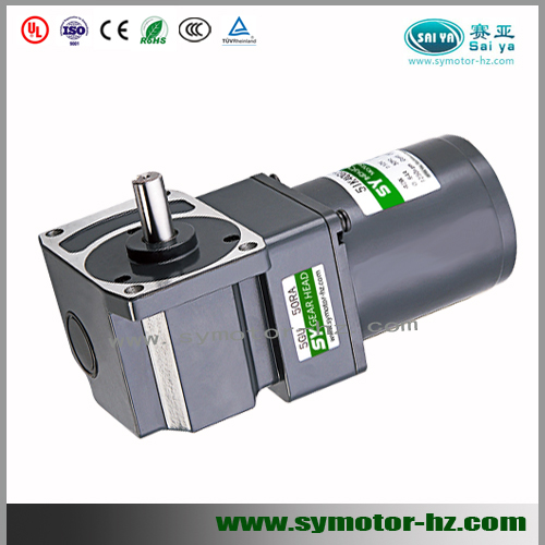 worm gear angle AC motor for medical equipment Worm Output Shaft (RA)