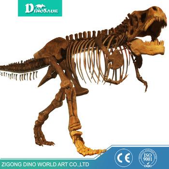 Dinozor Müzesi Reçine Dinozor T Rex Iskelet Buy T Rex Iskelet