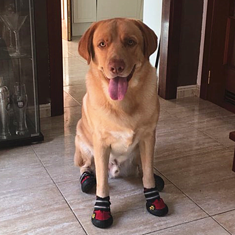 Dog Shoes For Outdoor Non Slip 17