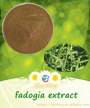 High Quality 100% Natural Fadogia Extract Fadogia Agrestis Stem Powder  Fadogia Agrestis Extract - Buy Fadogia Extract,Fadogia Agrestis Stem