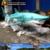My Dino-C019 Theme Park Exhibition Decorative Marine Animal Model