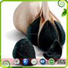 /product-detail/iso-supply-black-garlic-extract-powder-black-garlic-extract-wholesale-high-quality-60493576066.html