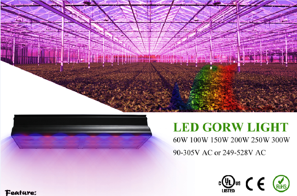 Alite 300W led grow light