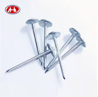 Galvanized Concrete Nails/ Roofing Nail /Wire Nail with High Quality and Competition Price
