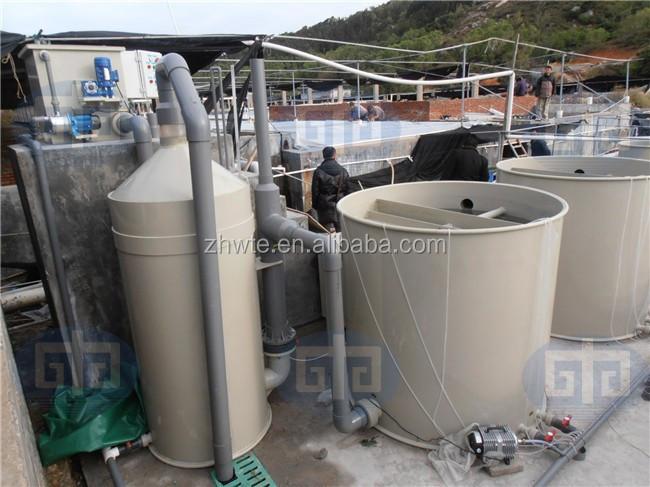 Fish farming protein skimmer for aquaculture equipment for Koi pond skimmer installation