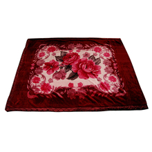 Double layer blanket,adults tv blanket,china mora blankets